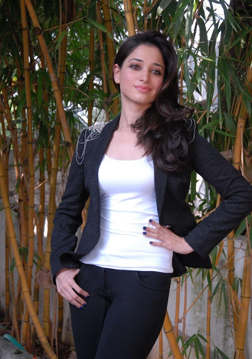 tamanna new photo gallery