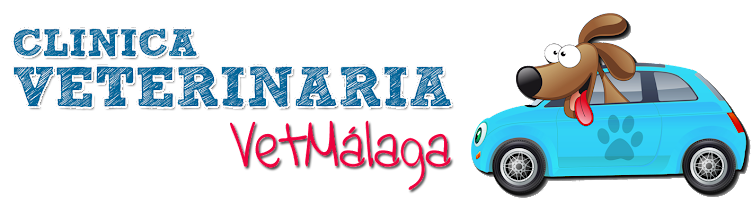Clínica Veterinaria y Veterinaria a domicilio  en Málaga