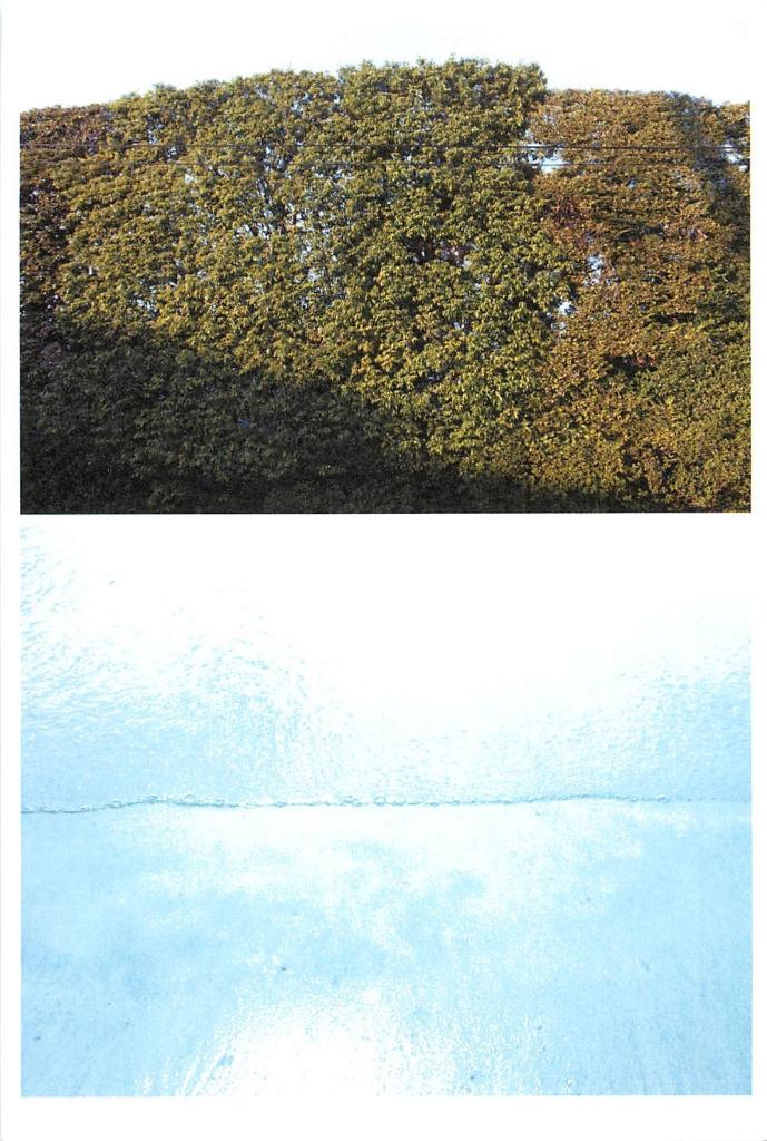 芹沢高志の画像 p1_6