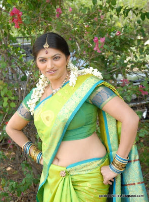 south indian aunty,telugu heroins hot photos saree,telugu heroins hot saree images,telugu actress hot sari pictures