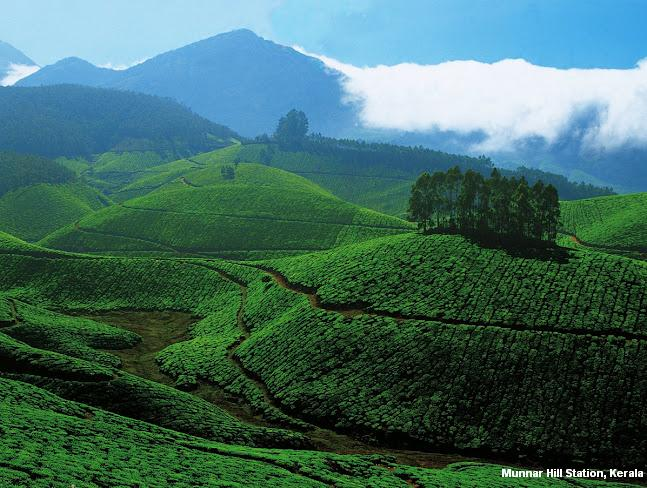 Munnar Hill Station Kerala India Beautiful Places Location Pictures Images