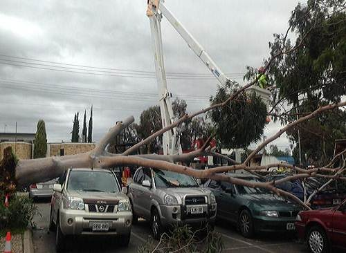Adelaide_Southern_Australia_wild_weather_damage_photo