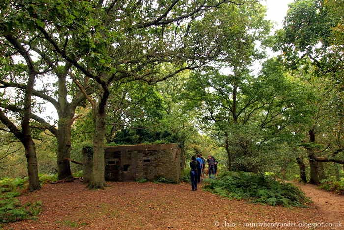 WWII pillbox - Guildford to Gomshall, England