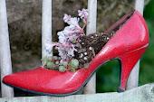 Shoe...