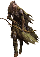 Leśne Elfy Strażnik Polany 1