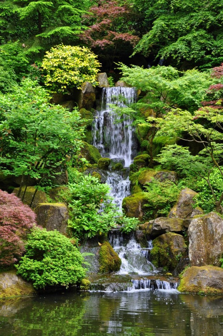 japanese garden for lanscaping