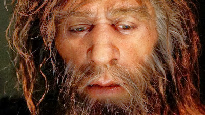 Neanderthal viruses found in modern Humans