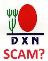 dxn scam or not