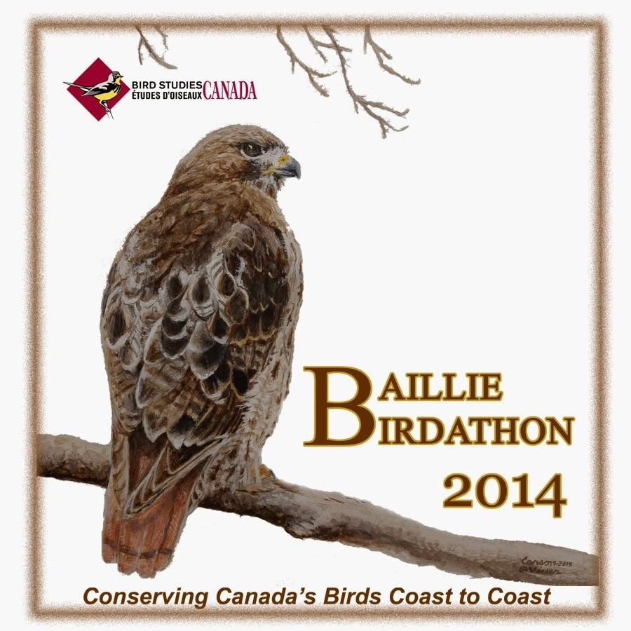 2014 Baillie Birdathon