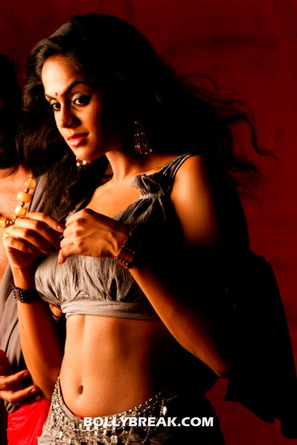 karthika in gray dress showing her navel - (2) -  Karthika photo shoot from Telugu movie