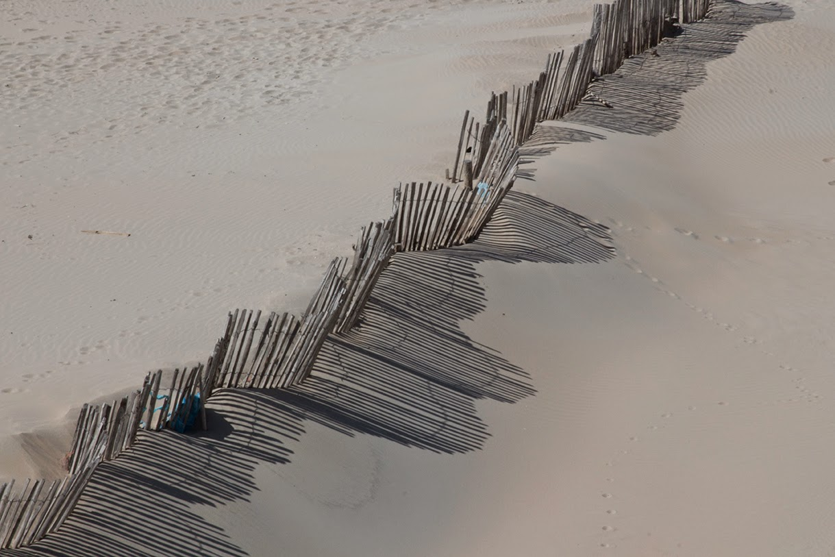 curved fence on the beach