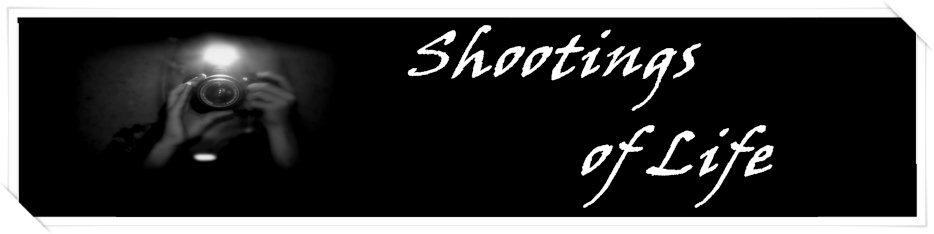 Shootings of life