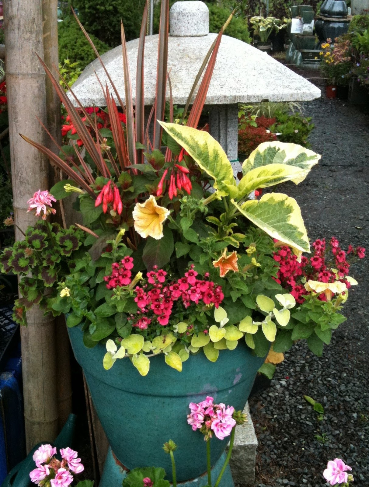 Container garden tips the fancy flora for Flowers landscape gardening