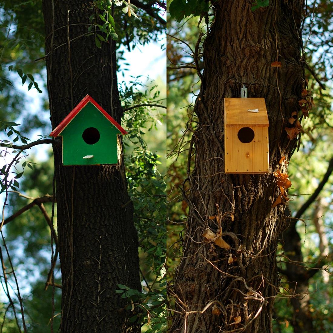 Къщичките за птички Page