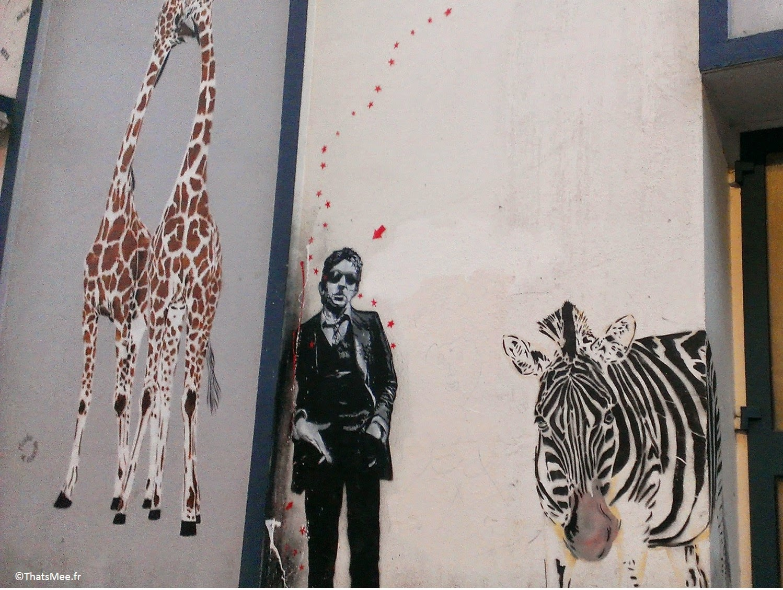 Animaux girafe zebre Gainsbourg Place de Clichy Street Art Paris