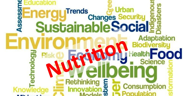 Positioning Nutrition Within the SDGs: A Proposal