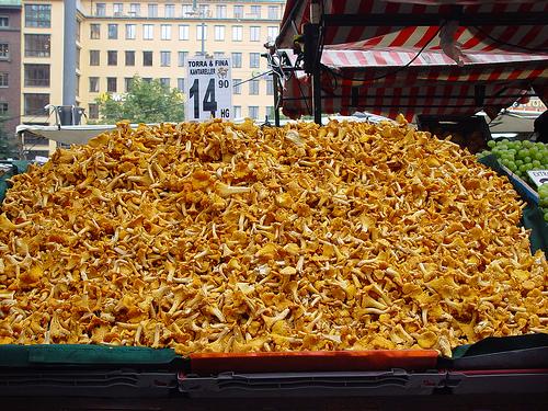 French Menu: Chanterelle Mushrooms, the Most Famous Four. Chanterelle ...