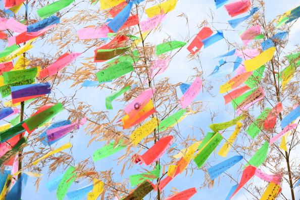 Papeles de colores con los deseos colgados en ramas de bambú (Tanabata)