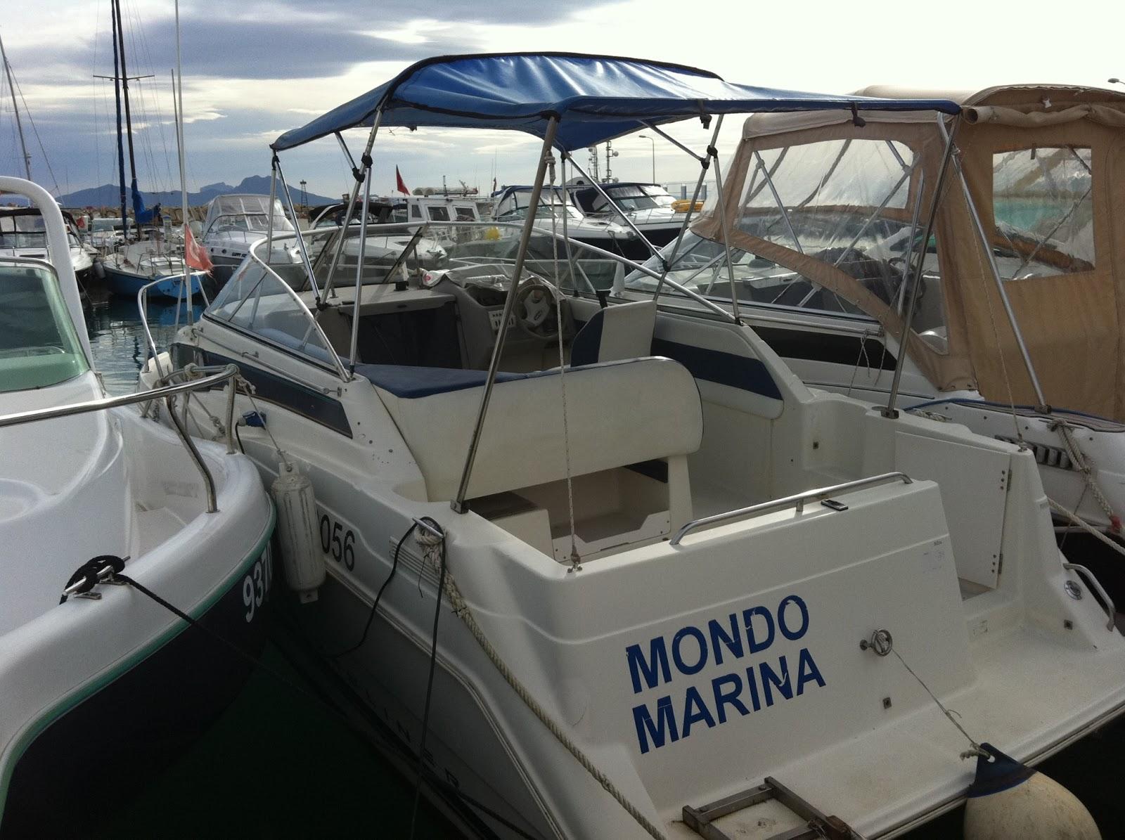 g n ral marine service a vendre bateau bayliner. Black Bedroom Furniture Sets. Home Design Ideas