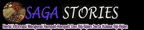 Saga Stories