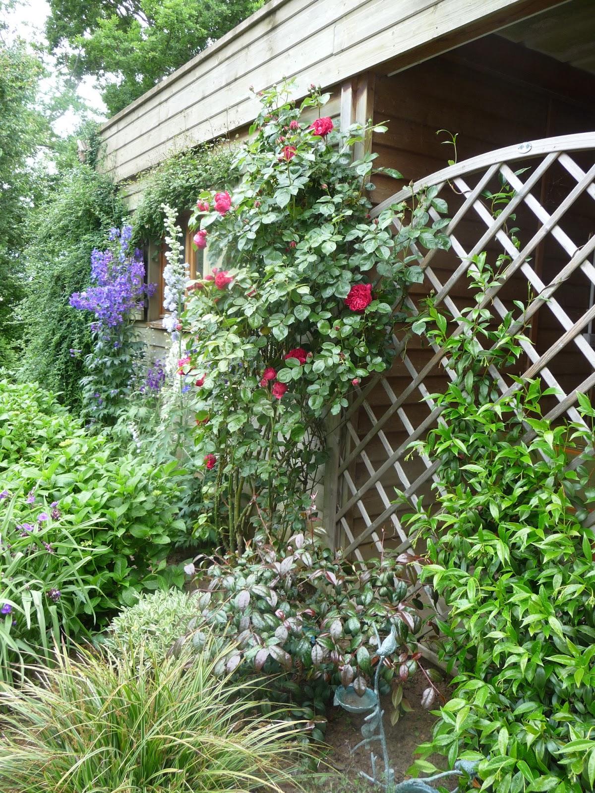 Ma terre de bruy re humeur maussade for Cabane de jardin que choisir