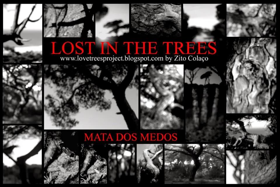 Exposição de Fotografia Lost In The Trees