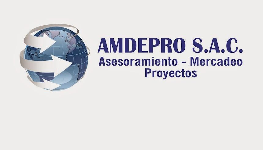 AMDEPRO S.A.C.