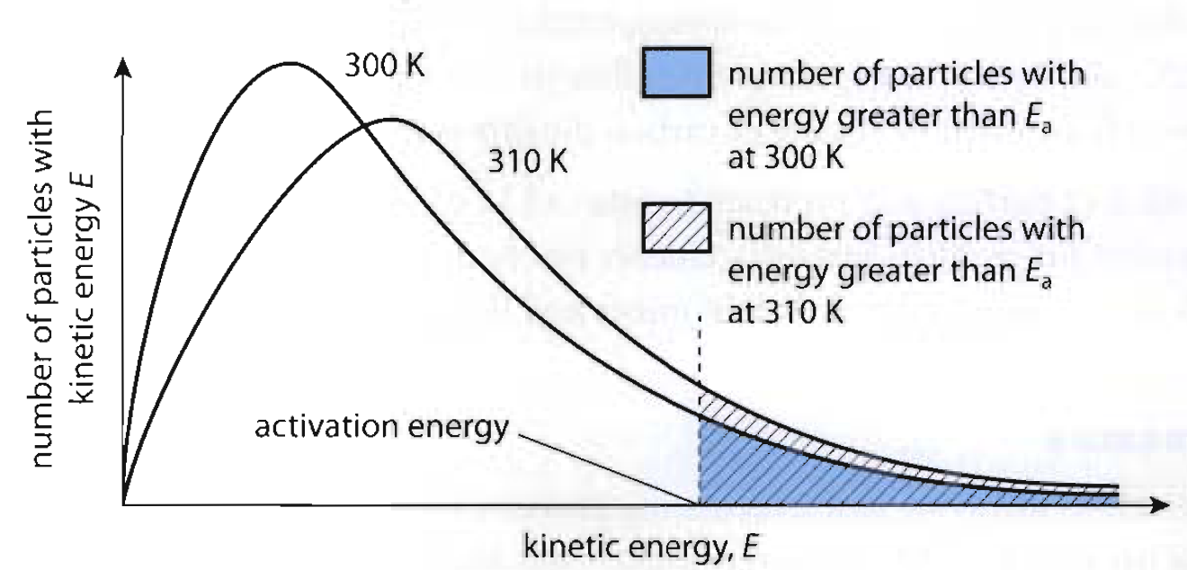 rates of reaction and the effect of different changes have on them For reactions that have a high energy barrier between reactants and products, the rate is highly responsive to change in temperature, and such reactions become the pressure applied to the reacting system also may be significant, partly because it has an effect on concentration and partly because mechanisms involving.