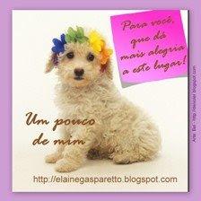 **Selinhos**