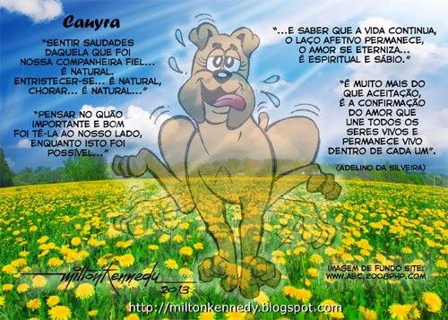 Cauyra, fiel companheira