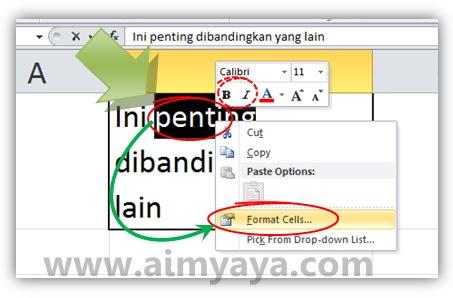 Gambar: Mengatur format teks di dalam sel Microsoft Excel
