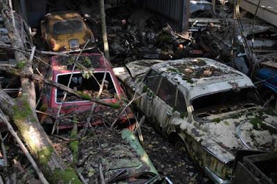 carros antigos abandonados em fazendas