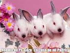 "♥ "" LA CASA DE MI PADRE "" ♥ Poema de Ps. Gozo"