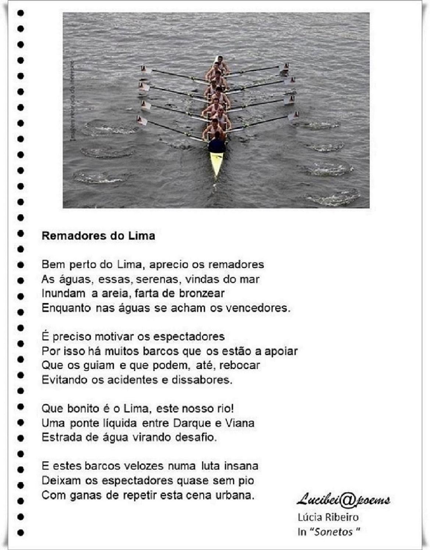 © LÚCIA RIBEIRO