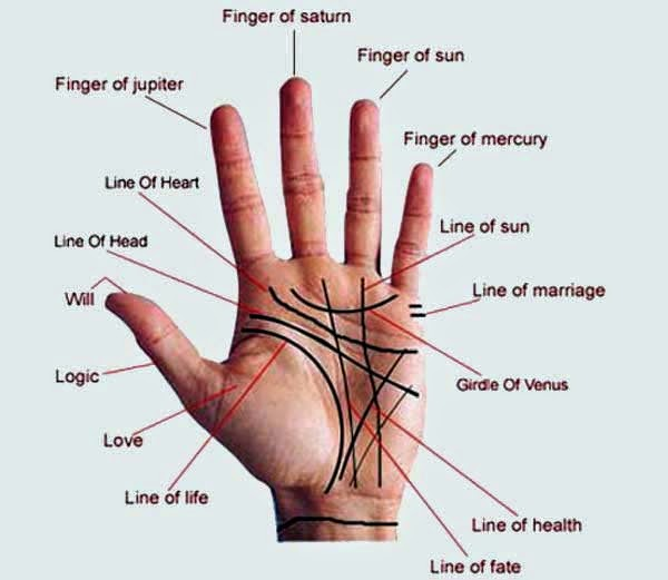 Palmistry About Various Disease