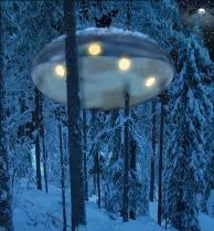 rumah pohon ufo