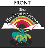 mantis shrimp Panama