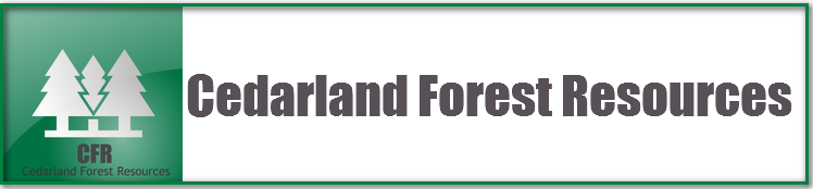 Cedarland Forest Resources