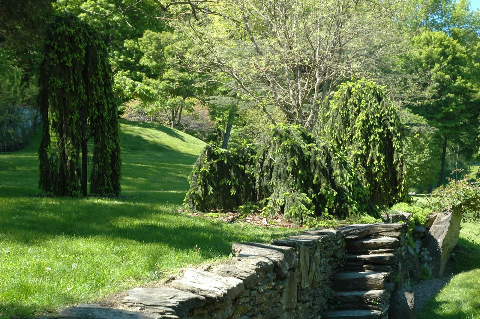 Innisfree Garden, Millbrook, New York