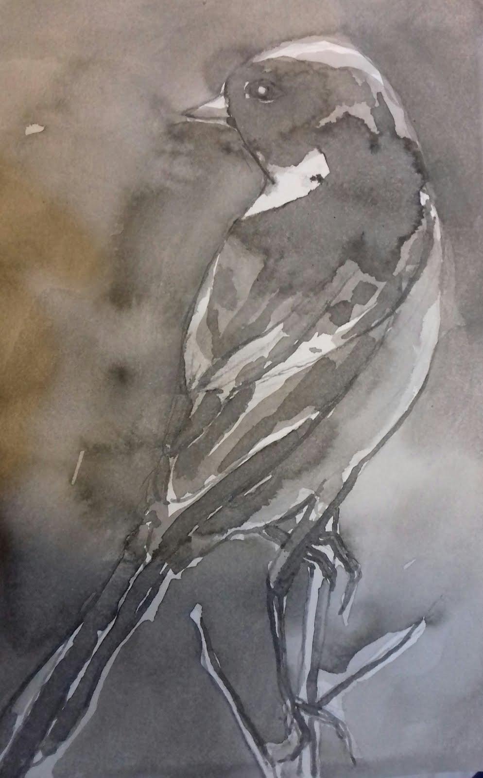 Otro bird onwire