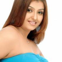 South-Indian-Hot-Masala-Actress