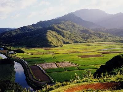 Beautiful Place in Haflong