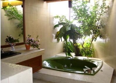 A Larger Dark Green Foliage If The Size Of Your Bathroom Allows It Bonsai Are Also Perfect In This Environment Because They Give Touch Serenity