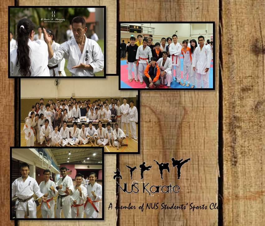 NUS Karate