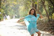 Seerath Kapoor latest glam pics-thumbnail-3