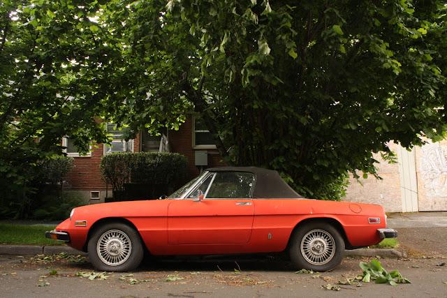 1973 Alfa Romeo Spider.