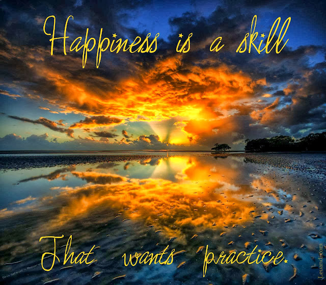 Happiness, skill, practice