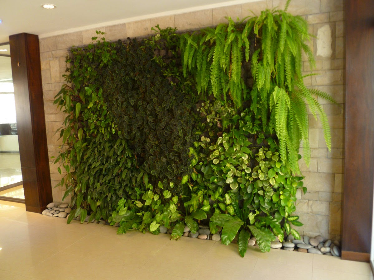 Reformas madrid jardines verticales for Jardin vertical interior casero