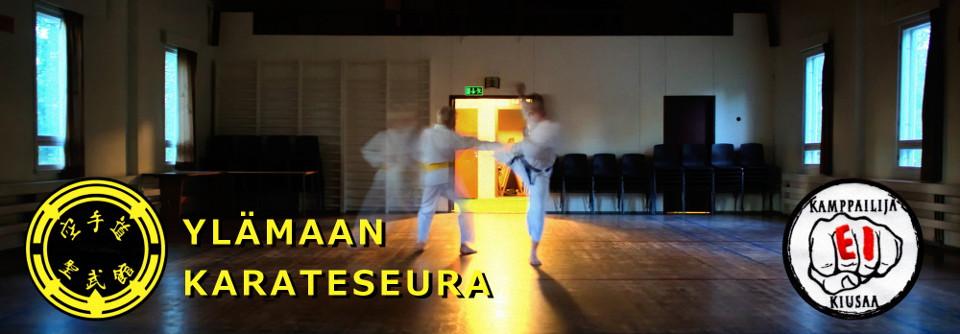 Ylämaan Karateseura