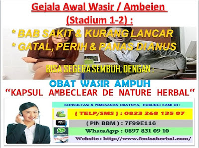 Obat Ambeien Pada Pria  _ Gejala Wasir / Ambeien Stadium 1 - 2